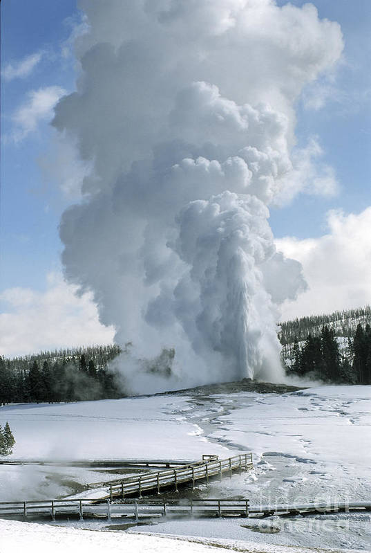 Yellowstone Poster featuring the photograph Old Faithful In Her Glory - Yellowstone by Sandra Bronstein