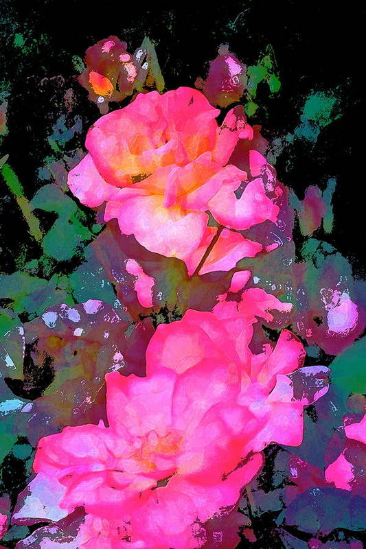 Floral Poster featuring the photograph Rose 193 by Pamela Cooper