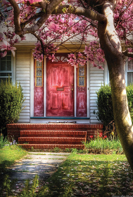 Savad Poster featuring the photograph Spring - Door - Westfield Nj - Pink by Mike Savad
