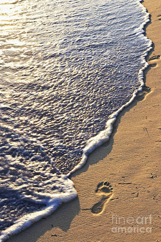 Footstep Poster featuring the photograph Tropical Beach With Footprints by Elena Elisseeva