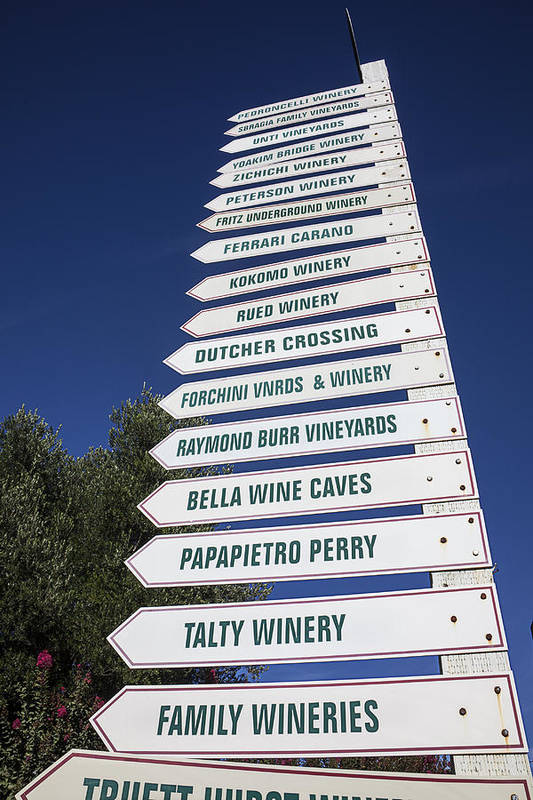 Wine Poster featuring the photograph Wine Country Signs by Garry Gay