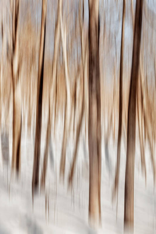 Abstract Poster featuring the photograph Winter Abstract by Bill Wakeley
