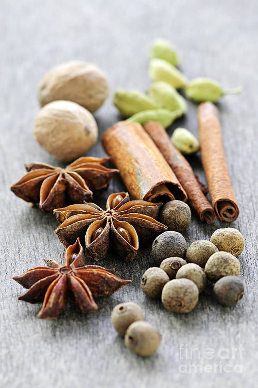 Spices Poster featuring the photograph Assorted Spices by Elena Elisseeva