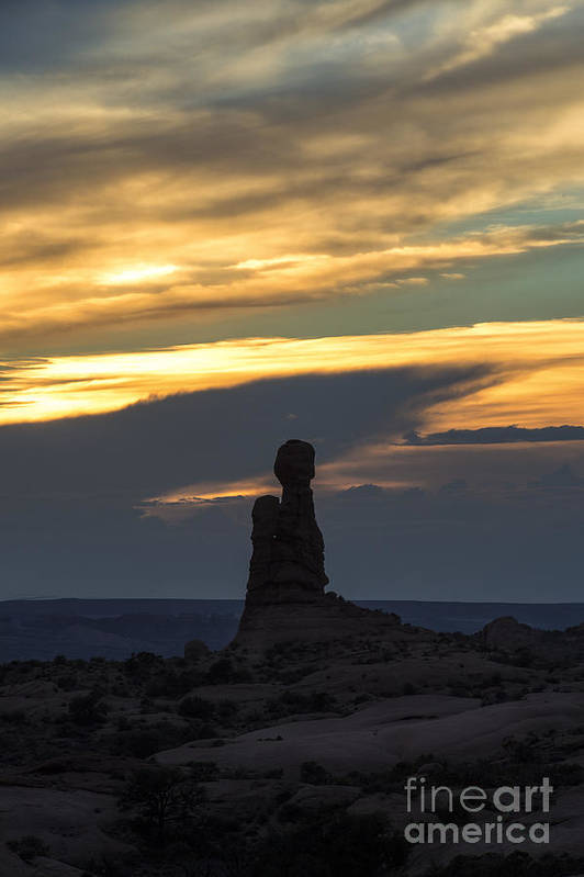 Southwest Poster featuring the photograph Standing Tall by Sandra Bronstein