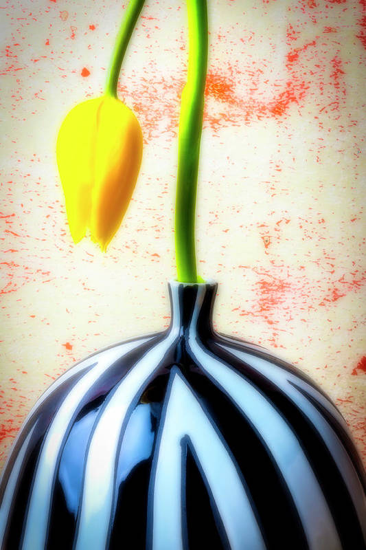 Yellow Poster featuring the photograph Yellow Tulip In Striped Vase by Garry Gay