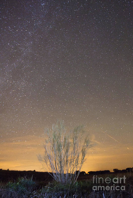 Dark Poster featuring the photograph Alqueva Dark Sky Reserve by Andre Goncalves