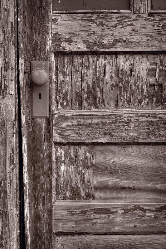 Door Poster featuring the photograph Cabin Door Bw by Steve Gadomski