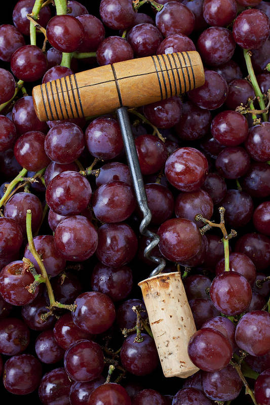 Corkscrew Wine Cork Red Grapes Poster featuring the photograph Corkscrew And Wine Cork On Red Grapes by Garry Gay