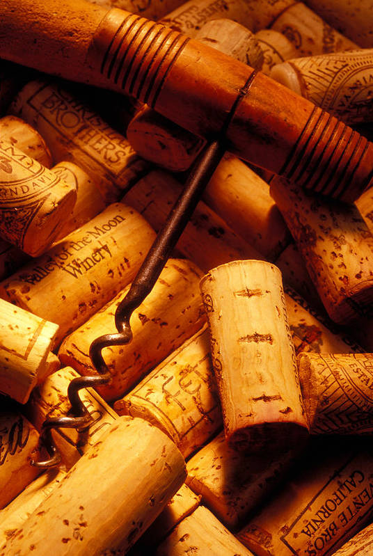 Wine Poster featuring the photograph Corkscrew And Wine Corks by Garry Gay