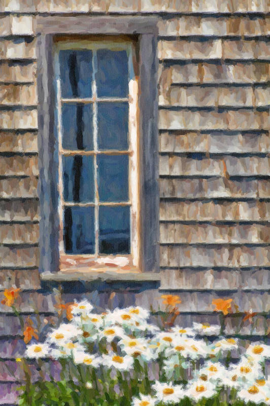 Wood Poster featuring the photograph Daisies And Daylilies by Verena Matthew