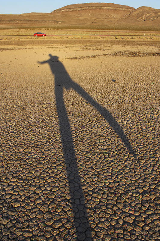 Death Valley Poster featuring the photograph Dancing Fool by Mike McGlothlen
