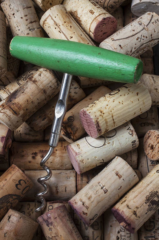 Wine Poster featuring the photograph Green Corkscrew by Garry Gay