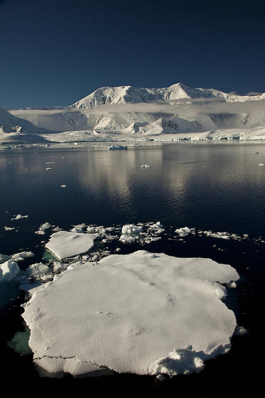00479578 Poster featuring the photograph Icefloe In The Neumayer Channel by Colin Monteath