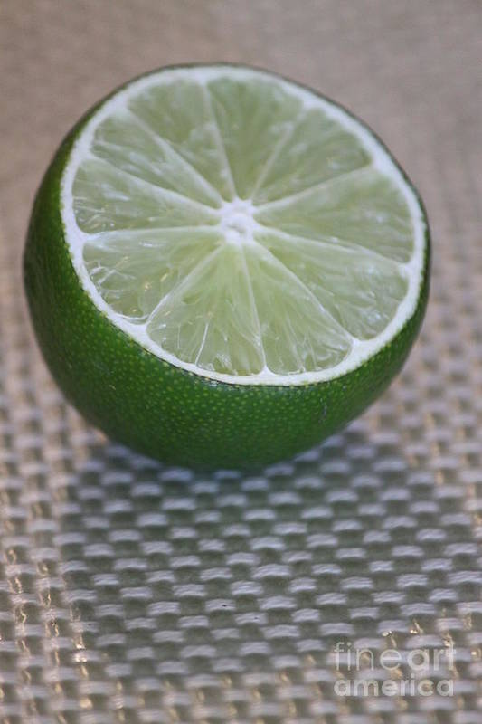 Lime Poster featuring the photograph Lime Light by Terri Thompson