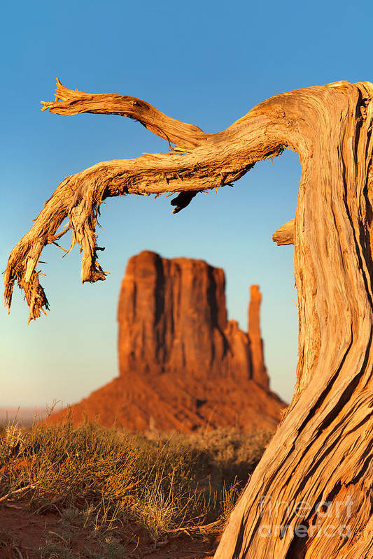American Poster featuring the photograph Monument Valley by Jane Rix