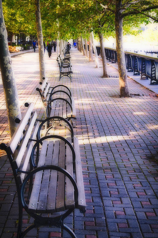 Benches Poster featuring the photograph Park Benches In Hoboken by George Oze