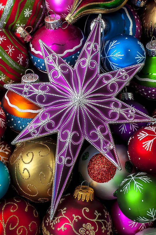 Purple Christmas Star Poster featuring the photograph Purple Christmas Star by Garry Gay