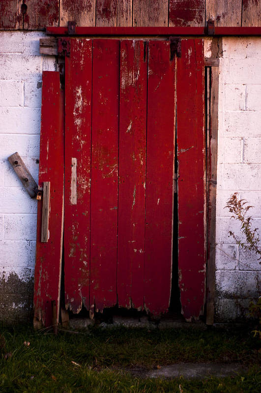 Farm Poster featuring the photograph Red Door by Cale Best