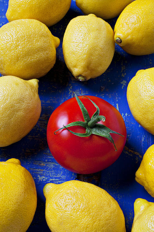 Single Tomato Poster featuring the photograph Single Tomato With Lemons by Garry Gay