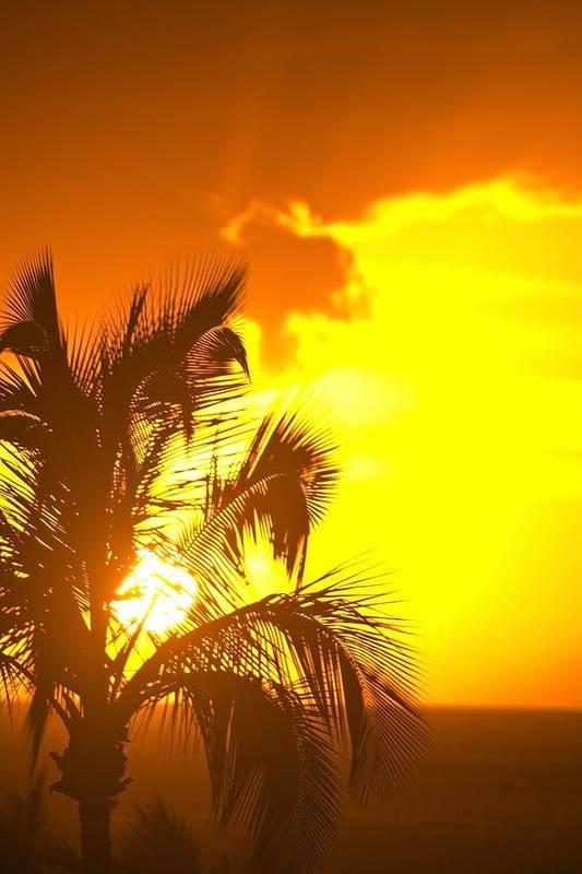 American Poster featuring the photograph Sunset, Wailea, Maui, Hawaii, Usa by Stuart Westmorland