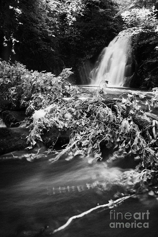 Glenoe Poster featuring the photograph the river at the Gleno or Glenoe Waterfall beauty spot county antrim by Joe Fox