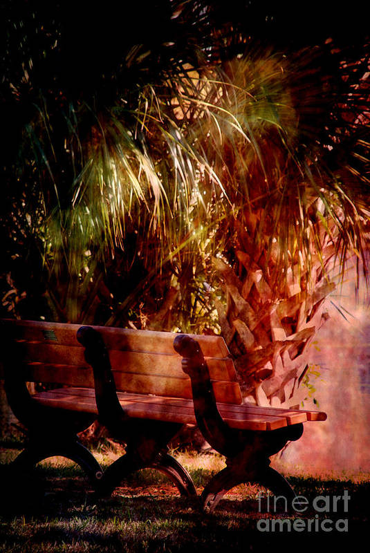 Bench Poster featuring the photograph Tropical Bench by Susanne Van Hulst