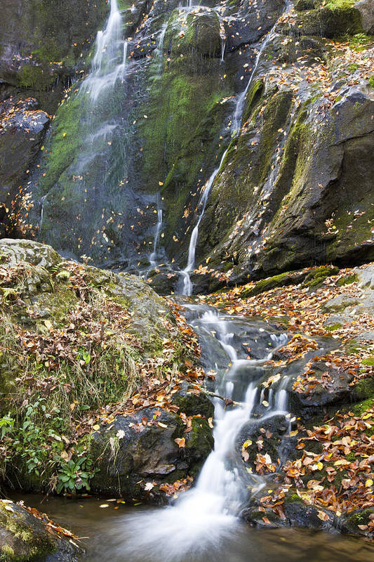 Shenandoah Poster featuring the photograph Upper Dark Hollow Falls In Shenandoah National Park by Pierre Leclerc Photography