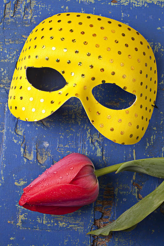 Yellow Poster featuring the photograph Yellow Mask And Red Tulip by Garry Gay