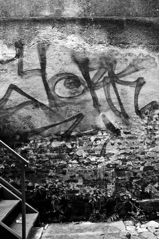 Back Ally Graffiti Charleston South Carolina Lowcountry Dustin Ryan Black White Poster featuring the photograph Back Alley Graffiti by Dustin K Ryan
