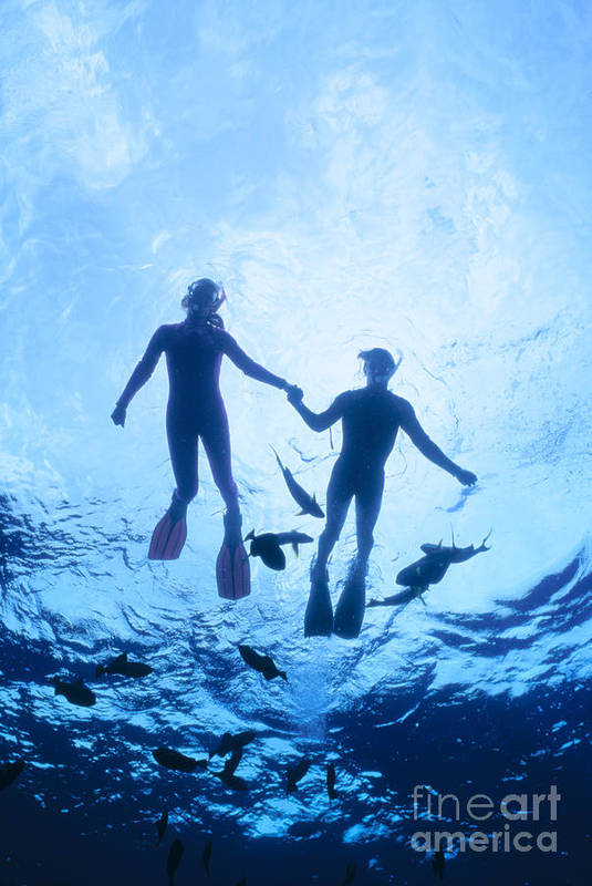 Aqua Poster featuring the photograph Couple At The Surface by Ed Robinson - Printscapes