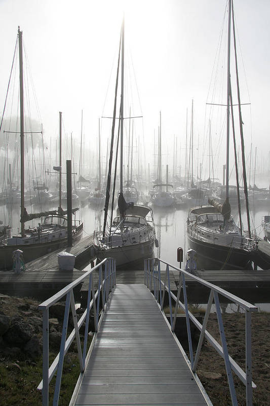 Sailboats Poster featuring the photograph Early Morning On The Docks by Laurie With