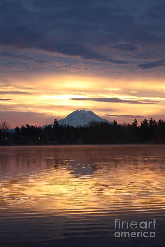 Mt. Rainier Poster featuring the photograph On American Lake by C E Dyer