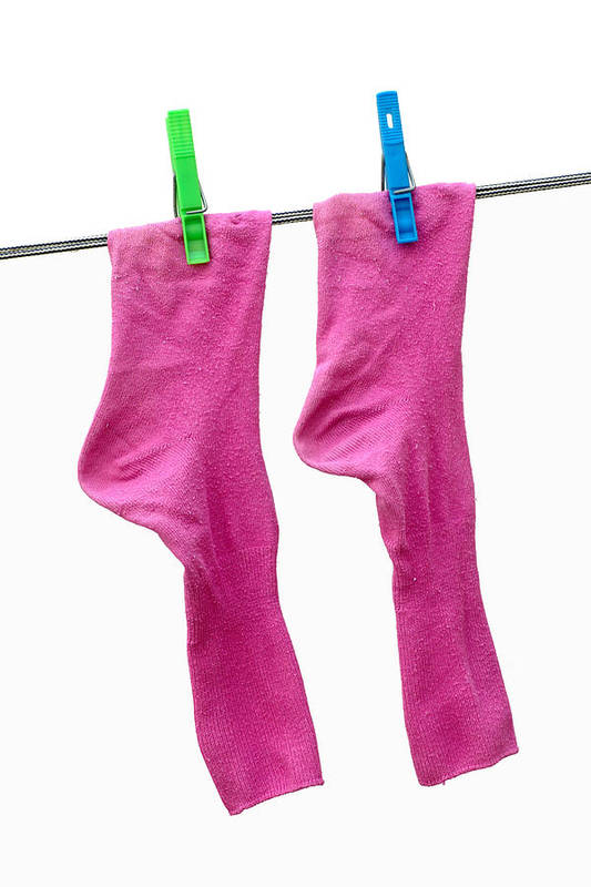 Pink Poster featuring the photograph Pink Socks by Frank Tschakert
