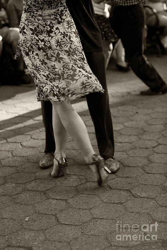 Tango Poster featuring the photograph Tango In The Park by Leslie Leda