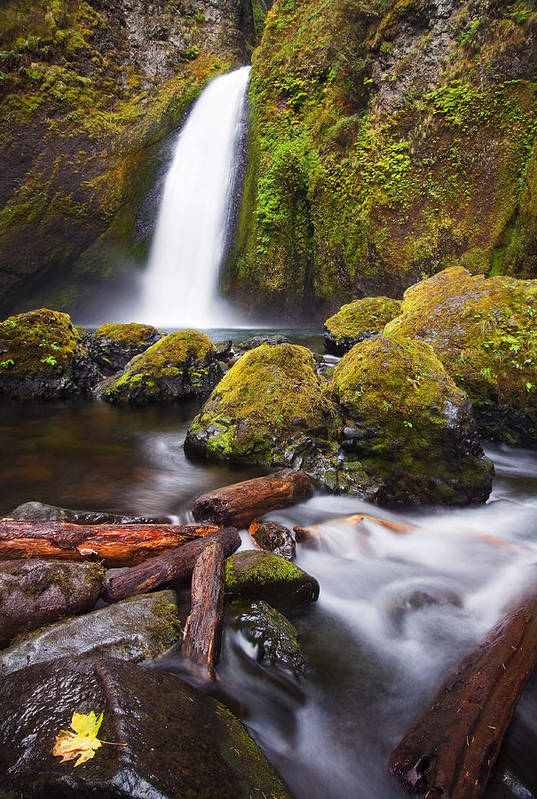 Waterfall Poster featuring the photograph Wahclella by Mike Dawson