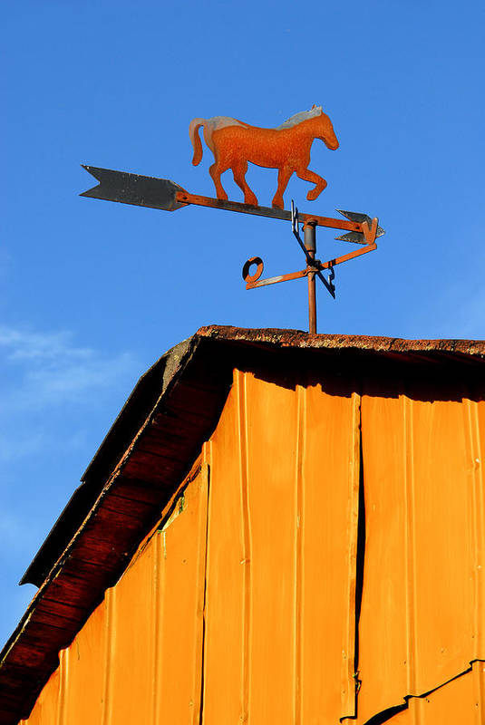 Weathervane Poster featuring the photograph Weathervane by Robert Lacy