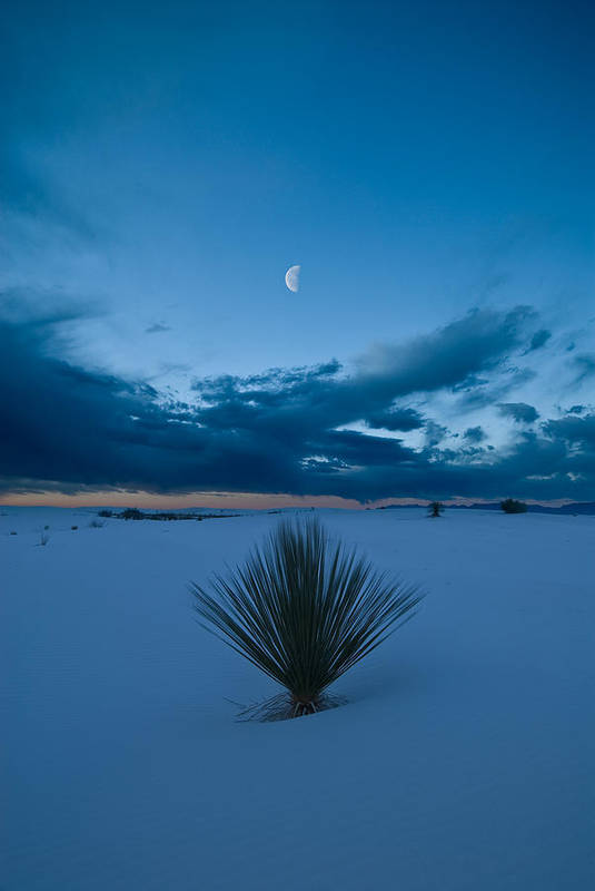Blue Poster featuring the photograph White Sands Moonrise by Steve Gadomski