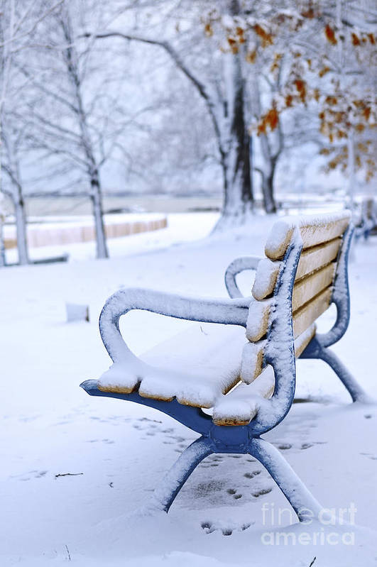 Winter Poster featuring the photograph Winter Bench by Elena Elisseeva