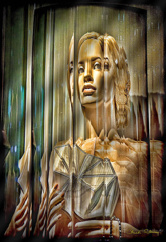 Woman In Glass - Shading Poster featuring the mixed media Woman In Glass by Chuck Staley
