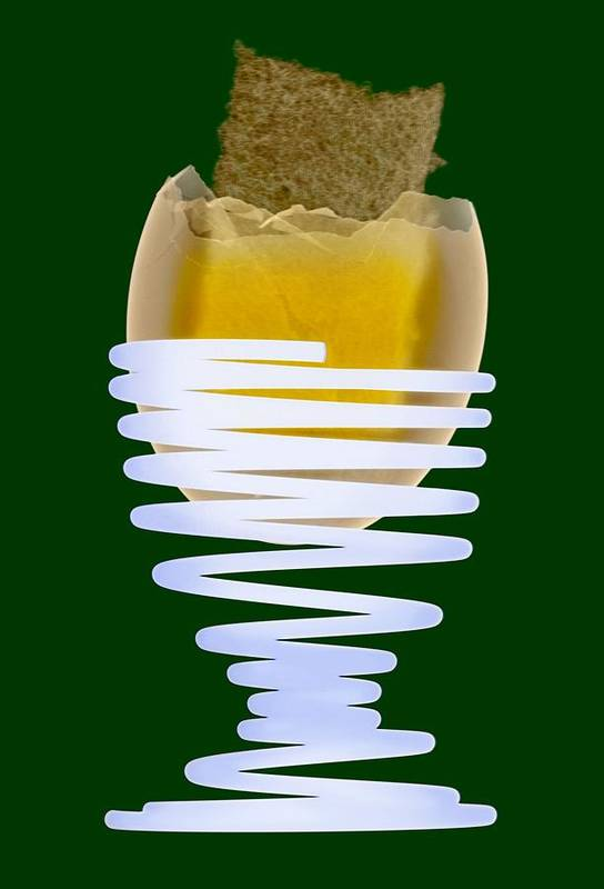 Egg Poster featuring the photograph Boiled Egg In An Eggcup, X-ray by D. Roberts