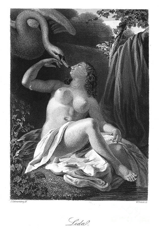 Ancient Poster featuring the photograph Leda And The Swan by Granger