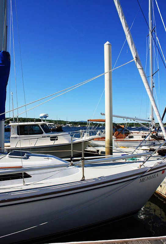 Sailboats Poster featuring the photograph Sailboats by Becca Brann