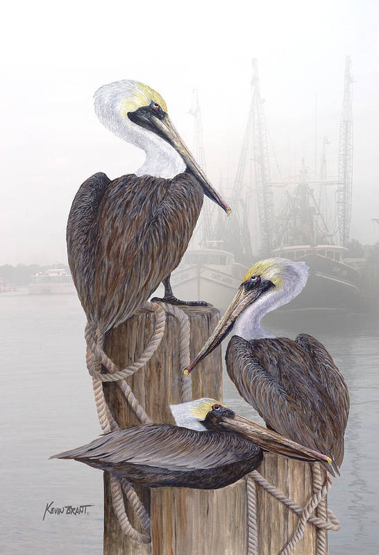 Pelicans Poster featuring the painting Fishing Buddies by Kevin Brant