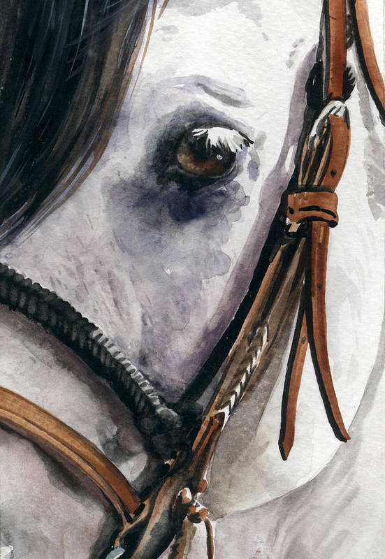 Cowboy Poster featuring the painting Horse Head by Nadi Spencer