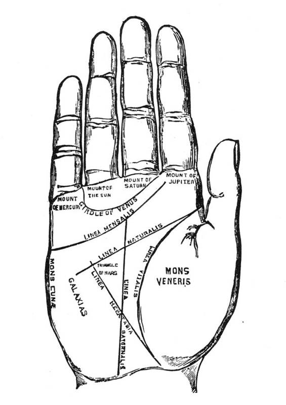 1885 Poster featuring the photograph Palmistry Chart, 1885 by Granger