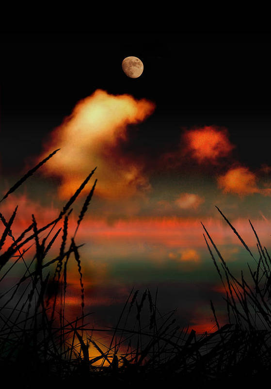 Landscape Poster featuring the photograph Pointing At The Moon by Mal Bray