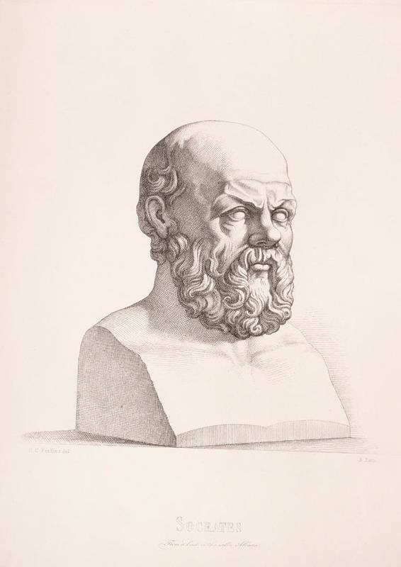 Male Poster featuring the drawing Portrait Of Socrates by CC Perkins