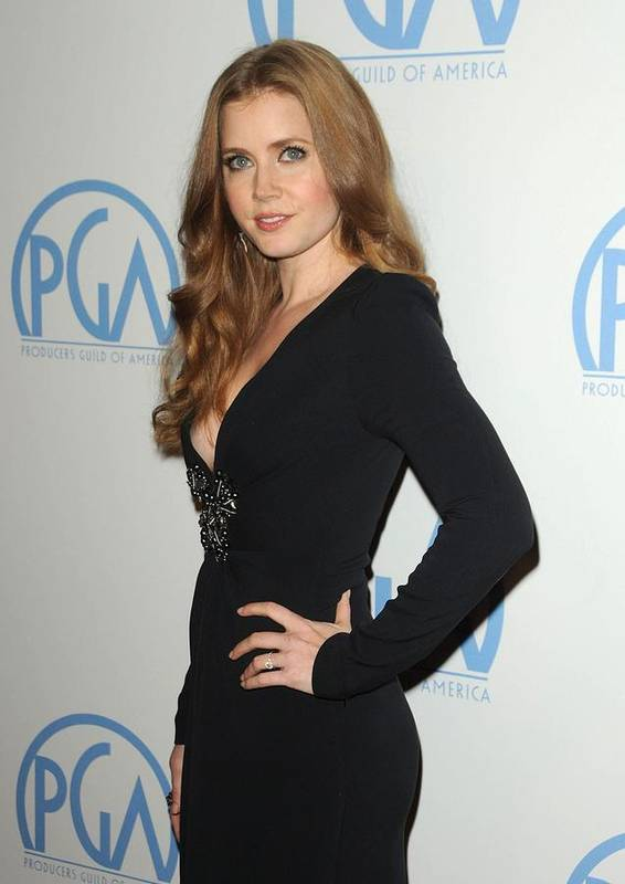 Amy Adams Poster featuring the photograph Amy Adams Wearing An Andrew Gn Dress by Everett