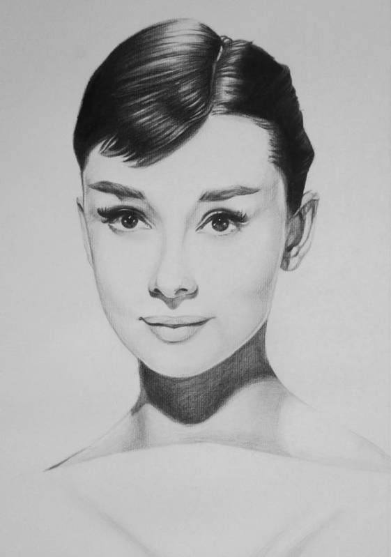Audrey Hepburn Charcoal Portrait Hollywood Portrait Cary Grant Breakfast At Tiffanies Poster featuring the drawing Audrey Hepburn by Steve Hunter