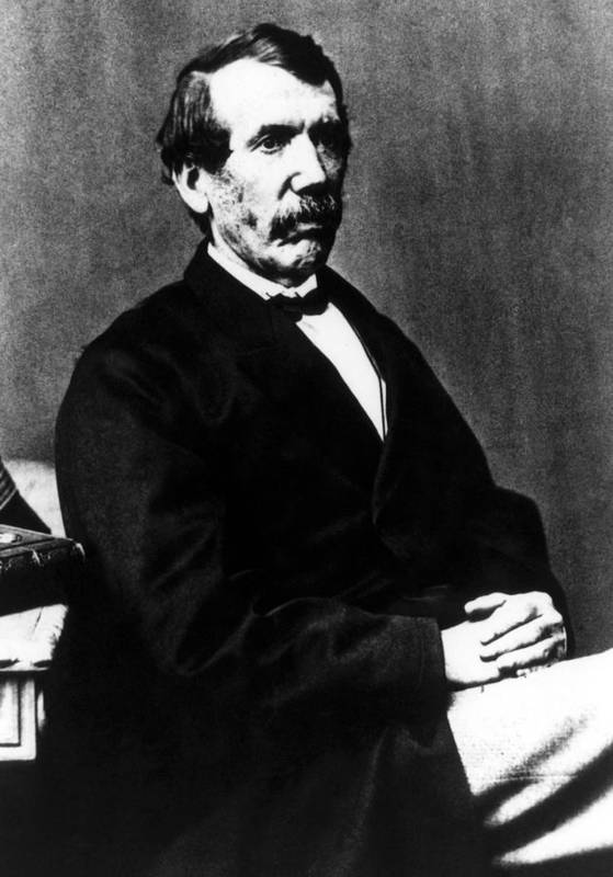 1800s Poster featuring the photograph David Livingstone, 1813-1873, Scottish by Everett